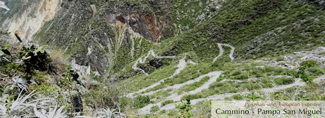 Colca Canyon Trek: pampa San Miguel