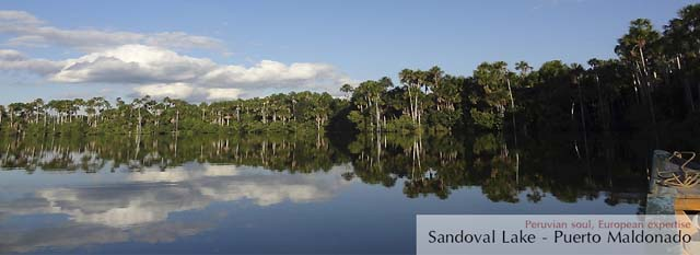 Tambopata Eco Lodge: Sandoval lake
