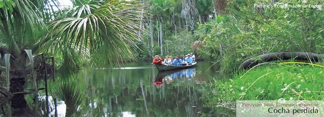 Avventura nella Foresta Amazzonica, viaggio a puerto maldonado: cocha