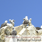 Tours to Ballestas Islands: Amazing Peru Tour