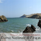 Viaggi alle Isole Ballestas: Lima-Riserva nazionale di Paracas Wildlife Sanctuary