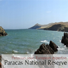 Tours to Ballestas Islands: Lima-Paracas Wildlife Sanctuary