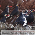 Tours to Ballestas Islands: Peru Classic - Travel to Peru