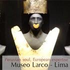 Viaggio a Lima: Lima-Riserva nazionale di Paracas