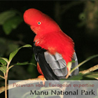Peruvian Amazon Tours: Manu National Park