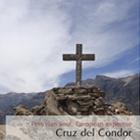 Viaggio nel Canyon Colca: Perù Express