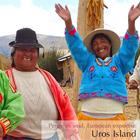 Tours en el Lago Titicaca: Increíble Tour a Perú