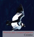 The flight of the Condor