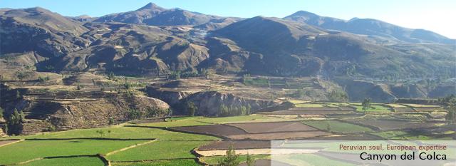 Viaggio Andino Peru e Bolivia: Canyon del Colca