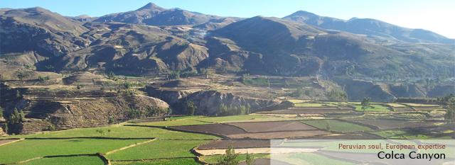Peru Bolivia Andean Tour: Colca Canyon