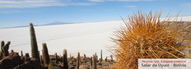 Bolivia Classic Tour: Explore the salt flats of Uyuni