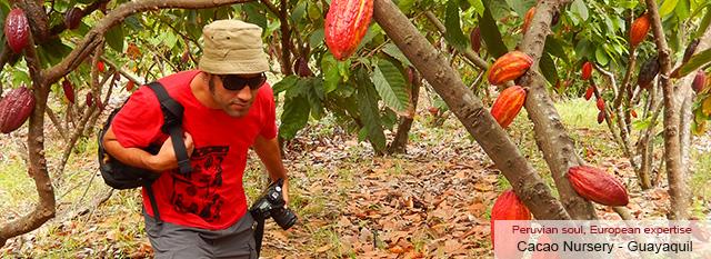 Ecuador Magic: Cacao Nursery – Native Community of Shuar