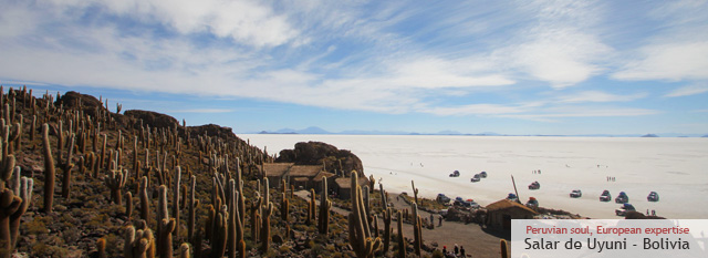 Bolivia Highlights: Il Salar de Uyuni