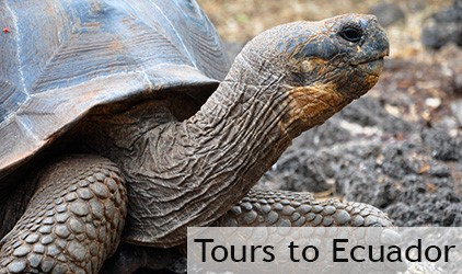 Tours to Ecuador